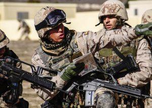fuerzas-armadas-ejercito-de-tierra-maniobras